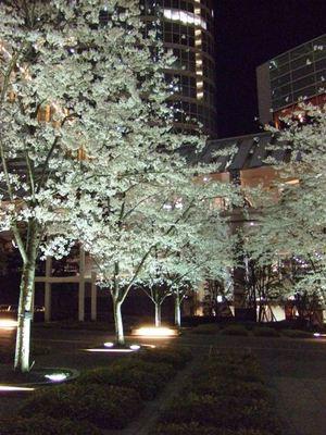 20080331shinagawa