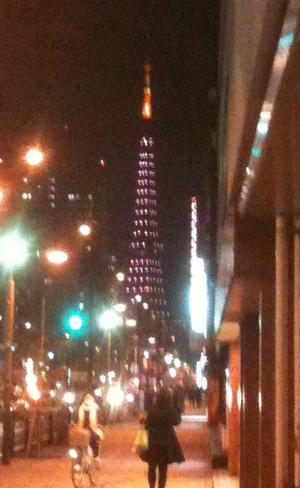 20091127tower2